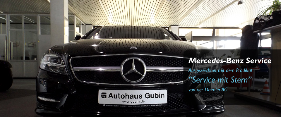 Mercedes-Benz Servicepartner